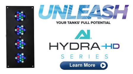 Hydra TwentySix HD
